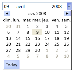 The DropDownDatePicker control
